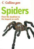 Spiders Gem