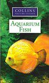 CNG Aquarium Fish