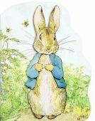 Peter Rabbit Oversized Board Book