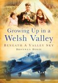 Growing Up In A Welsh Valley: Beneath A Valley Sky PBack