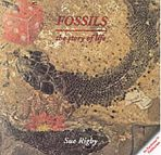 Fossils - The Story of Life