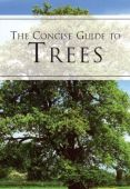 Concise Guide to Trees