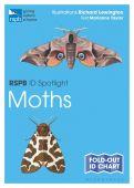 RSPB ID Spotlight Moths