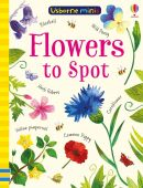 Flowers to Spot Usborne Minis