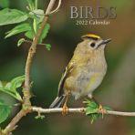 Birds 16 Month Calendar 2022