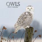 Owls 16 Month Calendar 2022